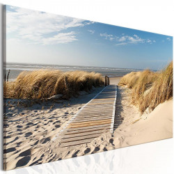 Billede - Ubevogtet strand