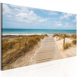 Billede - Windy Beach