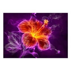 Fototapet - Fiery flower in...