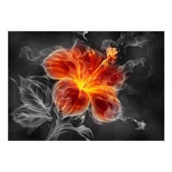 Fototapet - Fiery flower...