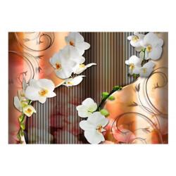 Fototapet - Orchid