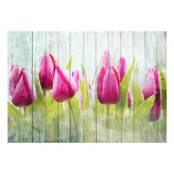 Fototapet - Tulips on white...