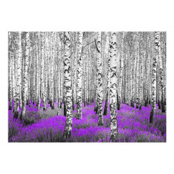 Fototapet - Purple asylum