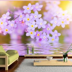 Fototapet -  Violet Petals...