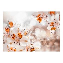 Fototapet - Lily of the Incas