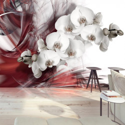 Fototapet - Orchid in red