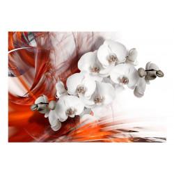 Fototapet - Orchid on fire II