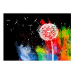 Fototapet - Colourful Element