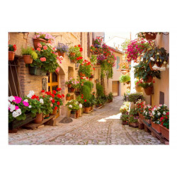 Fototapet - The Alley in...
