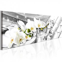 Billede - Twisted Orchids