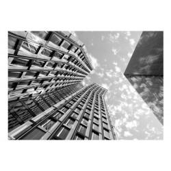 Fototapet -  Reach for the Sky