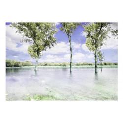 Fototapet - Spring scenery