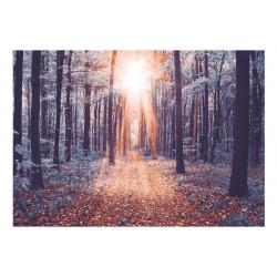 Fototapet - Edge of the Sun