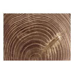 Fototapet - Raw tree