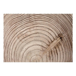 Fototapet - Wood grain