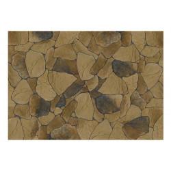 Fototapet - Stone petals