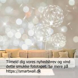 Vind dette smukke fototapet. Deltag ved at tilmelde dig vores nyhedsbrev i vores shop smartwall.dk #konkurrence #fototapet #nyhedsbrev  #blomsterfrø #smartwalldk #boligindretningogkreativitet #nordiskhjem